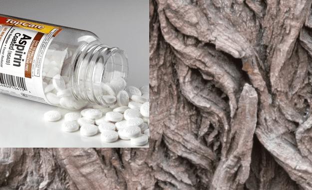 Aspirin/Salicylic Acid Use & Cancer Risk