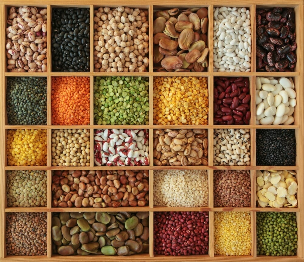 Intake of protein rich legumes such as peas and beans and the risk of cancer