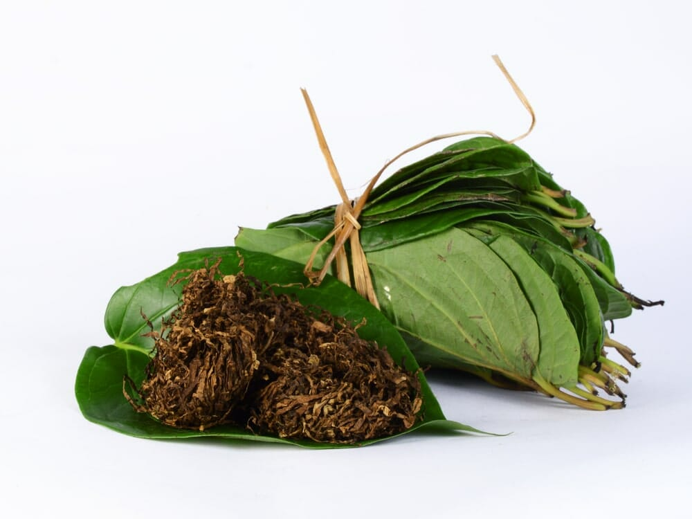 Smokeless Tobacco Use and the Risk of Cancer , betel leaf, Oral Cancer
