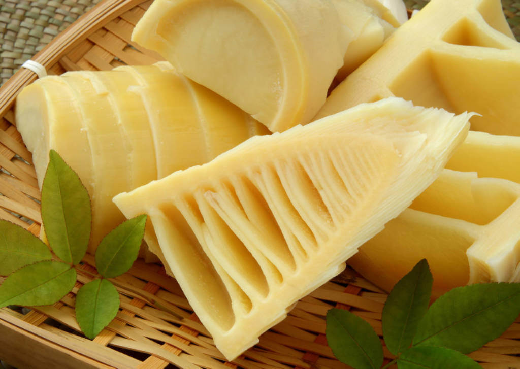 Bamboo Supplements for Cancer Treatment and genetic Risk