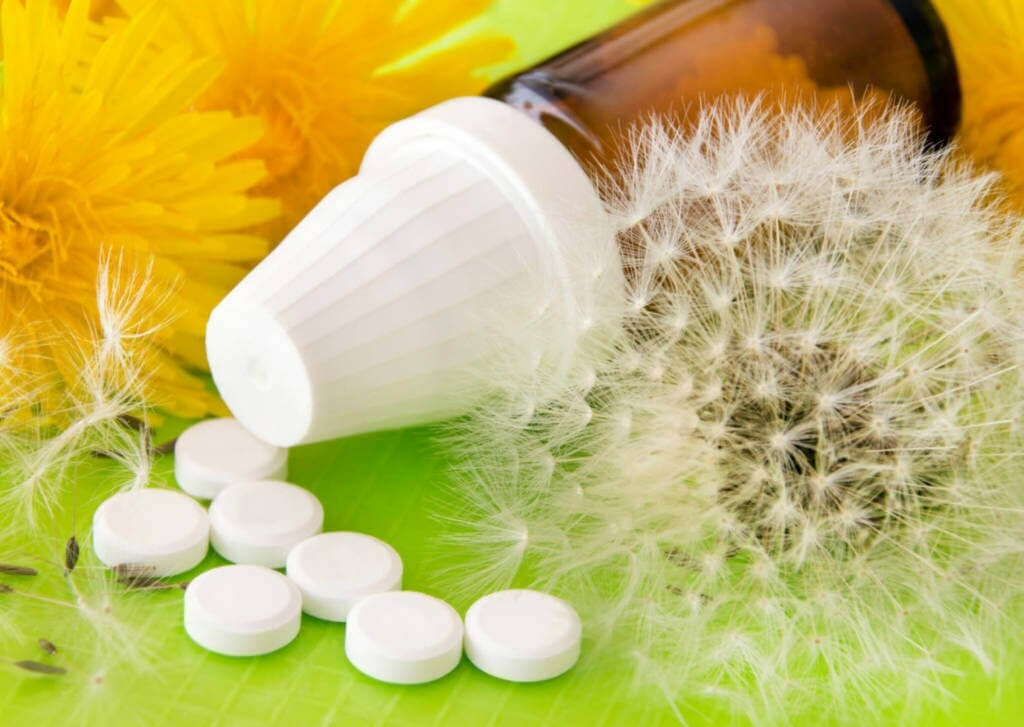 Dandelion Supplements for Cancer Treatment and genetic Risk