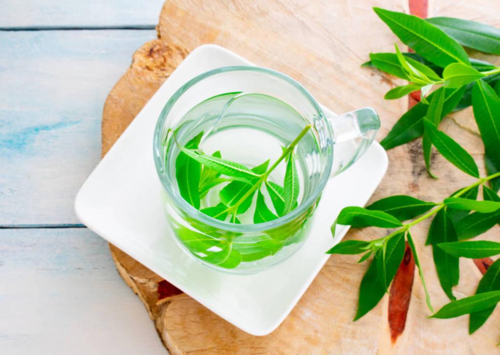 Lemon Verbena Supplements for Cancer Treatment and genetic Risk