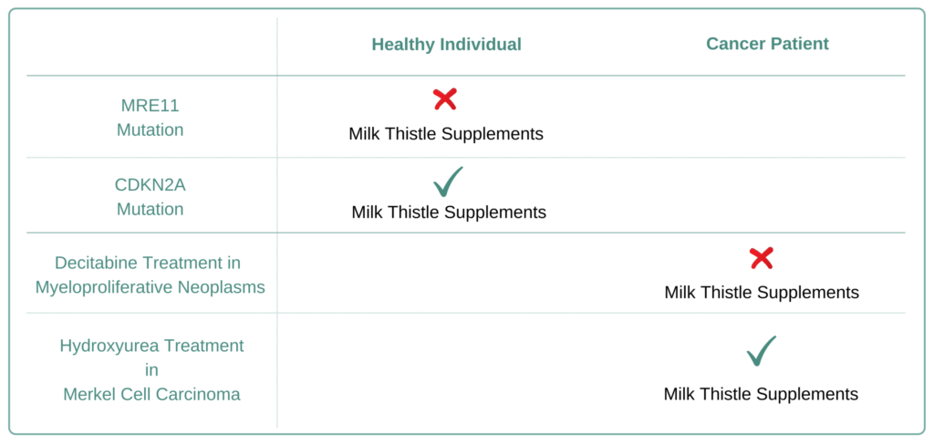 Which Cancer Types to Avoid Milk Thistle Supplement