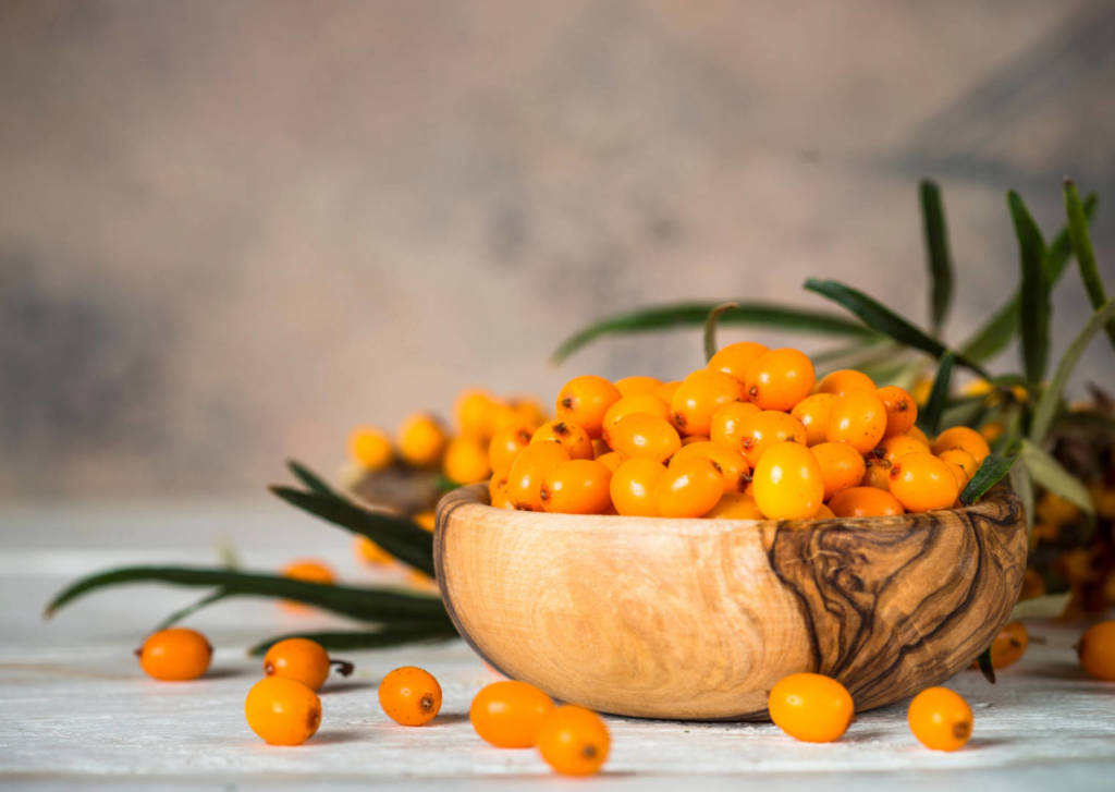 Sea Buckthorn Supplements for Cancer Treatment and genetic Risk