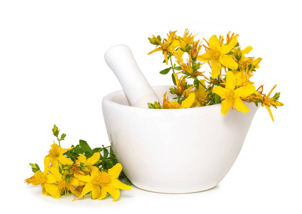 St John's Wort Supplements for Cancer Treatment and genetic Risk