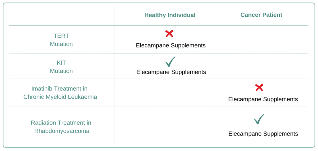 For Which Cancer Types to Avoid Elecampane Supplement