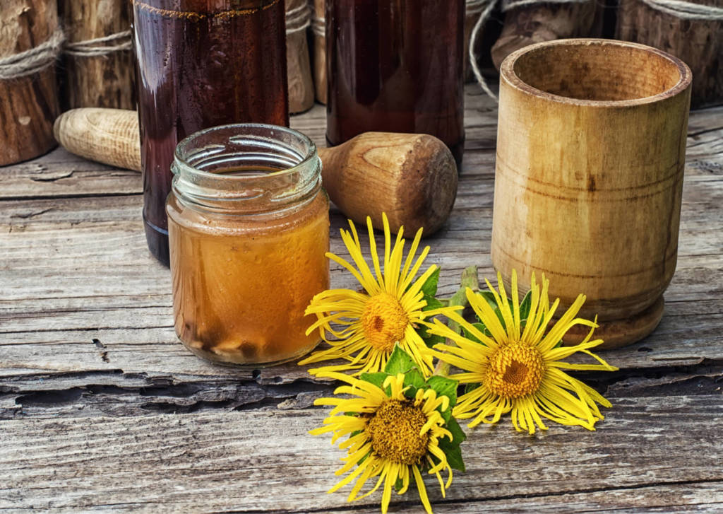 Elecampane Supplements for Cancer Treatment and Genetic Risk