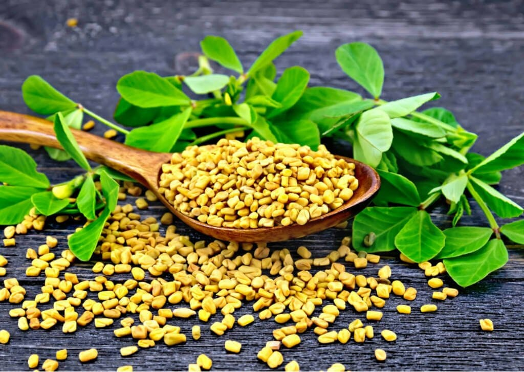 Fenugreek Supplements for Cancer Treatment and Genetic Risk