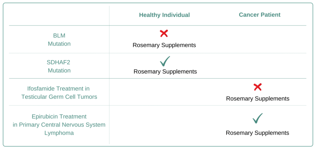 Which Cancer Types to Avoid Rosemary Supplement