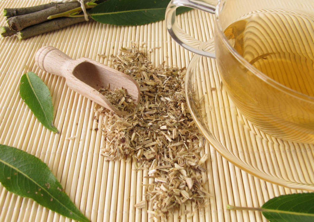 Willow Supplements for Cancer Treatment and Genetic Risk