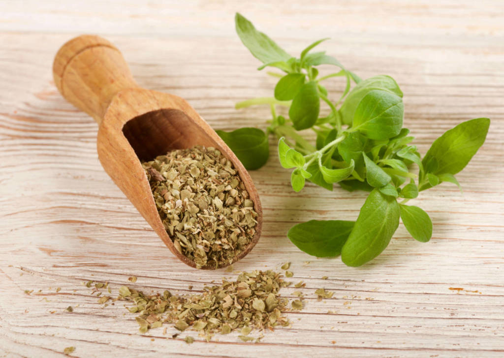 Oregano Supplements for Cancer Treatment and Genetic Risk