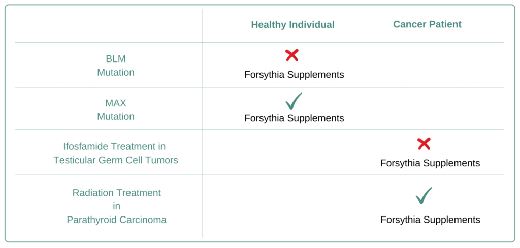 Which Cancer Types to Avoid Forsythia Supplement