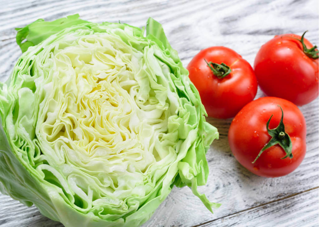 Diet for EGFR+ Cervical Squamous Cell Carcinoma (CSCC)